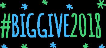Big Give 2018